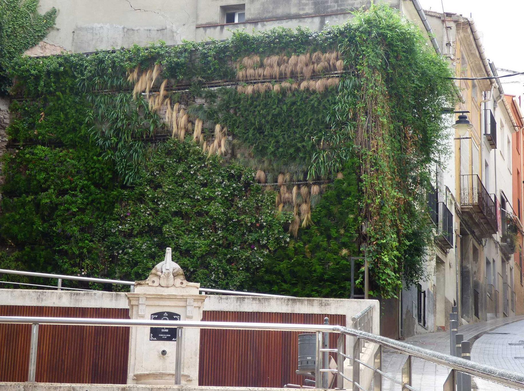 Renoven el jardí vertical del Delme El Periòdic d'Ontinyent