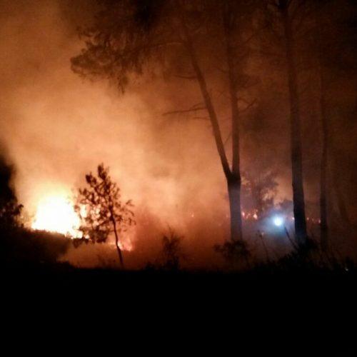 Un incendi crema 1.000 m2 de la Serra de Mariola