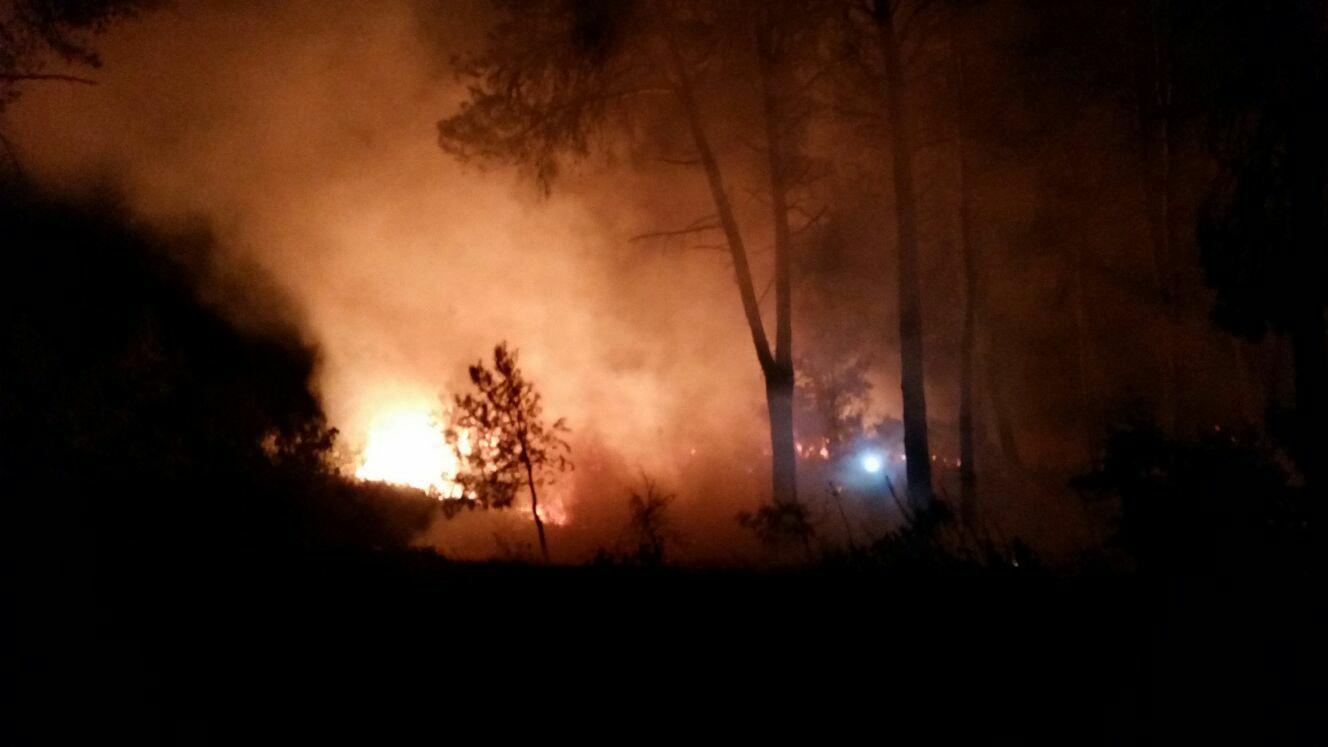 Un incendi crema 1.000 m2 de la Serra de Mariola El Periòdic d'Ontinyent