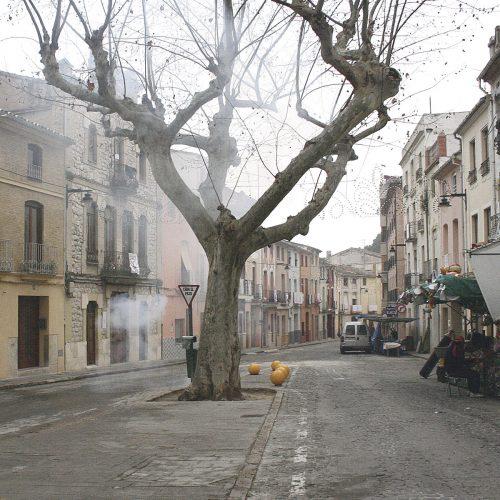 Insten al govern a salvar l'empedrat de Sant Antoni