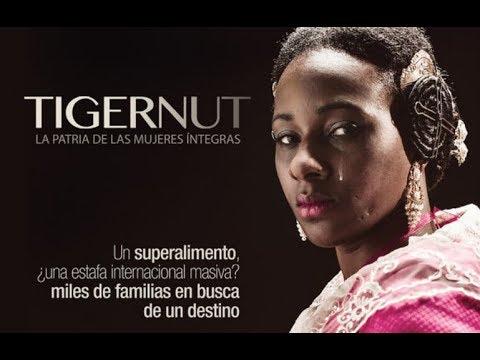'Poble Nou, Cultura a la fresca' comença hui amb la projecció de 'Tigernut' El Periòdic d'Ontinyent