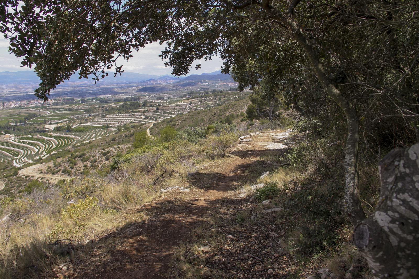 'Roda la Vall', 200 kilòmetres de ruta per als amants de la bicicleta El Periòdic d'Ontinyent