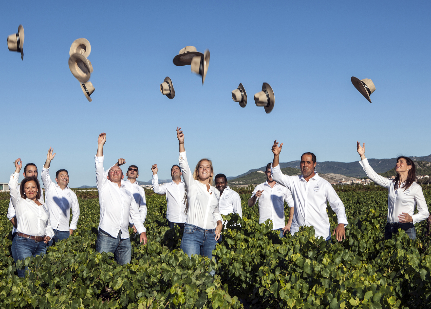 Crean un vino solidario con la investigación del cáncer El Periòdic d'Ontinyent