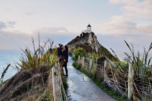 Nueva Zelanda, naturaleza en estado puro El Periòdic d'Ontinyent