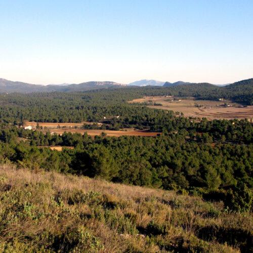'Entre Muntanyes', més de 30 rutes senderistes per la Vall d'Albaida