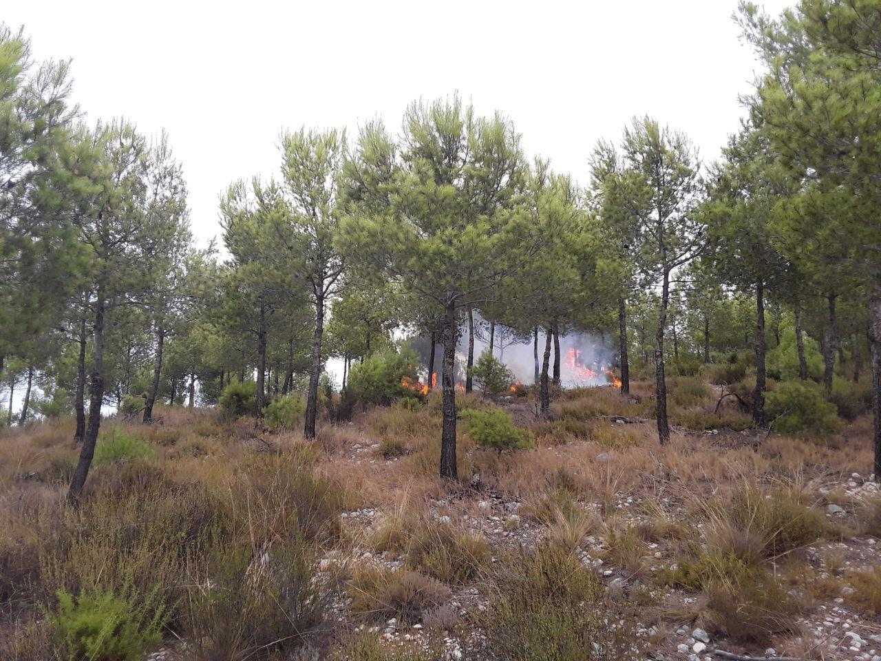 Incendi a la Serra del Torrater El Periòdic d'Ontinyent