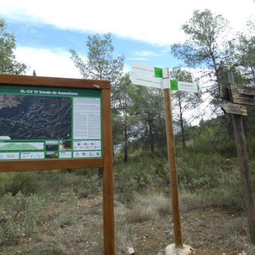 Un accident de trànsit provoca un incendi forestal a Gamellons