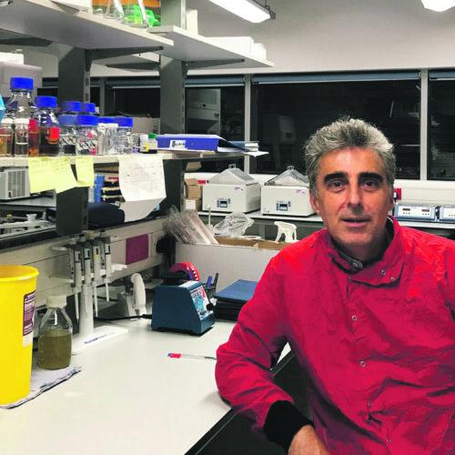 José Rafael Penadés, en el camí d'assolir una fita històrica: frenar la crisi dels antibiòtics