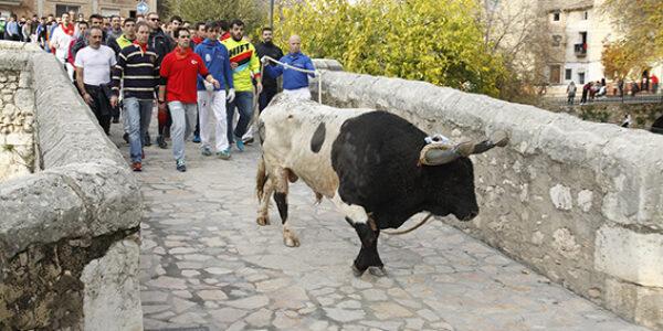 El recorregut del Bou en Corda comptarà amb barreres per a garantir la seguretat