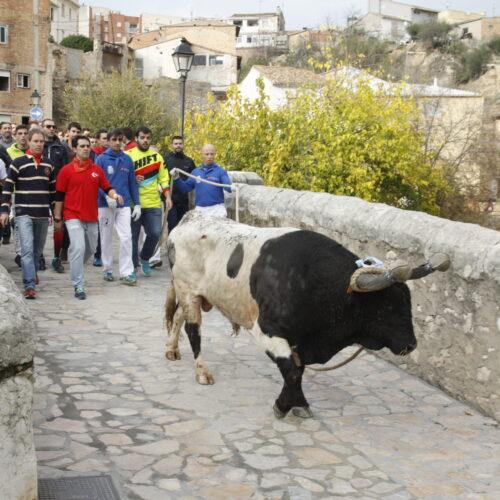Ontinyent celebrarà el Bou en Corda el 4 i 5 de desembre